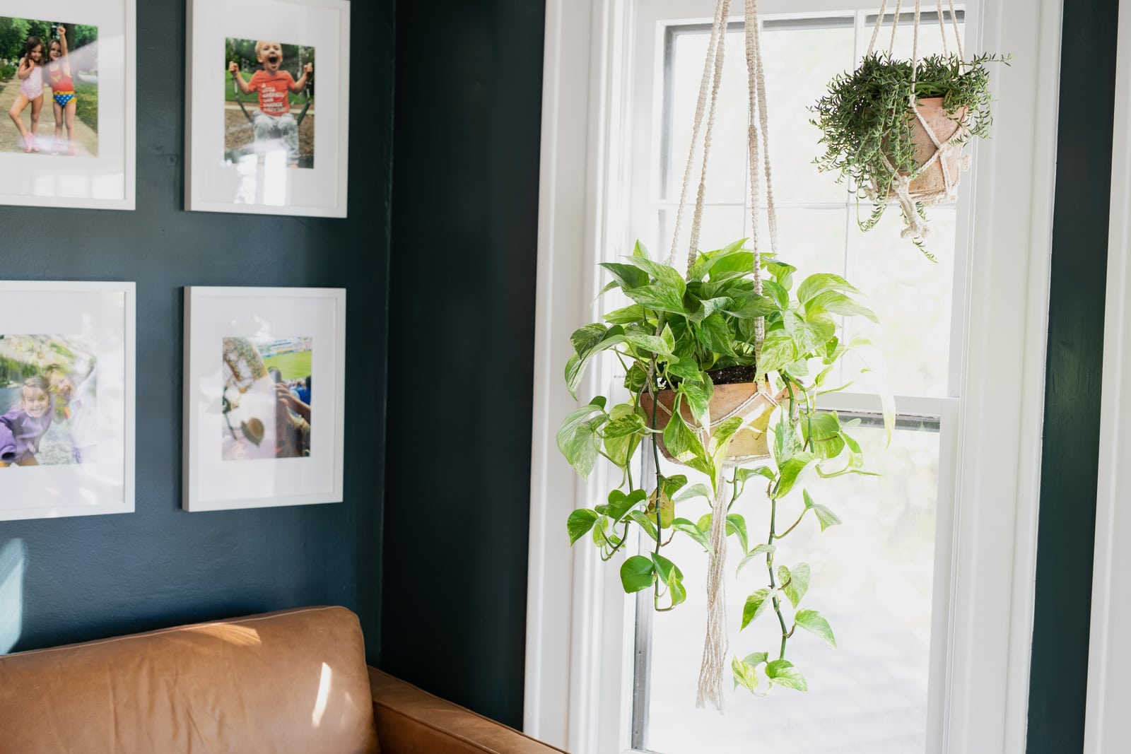 A bedroom to office conversion with plants and family photos